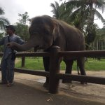 Photo of Elephant Safari Park & Lodge