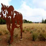 The entrace sculptures of the Brahman Cows at Brahman Hills