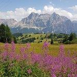 Photo of Rifugio Berggasthof Pralongia