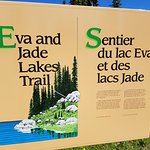Eva Lake Hike - Mount Revelstoke Park
