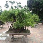 Thien Mu Pagoda Foto