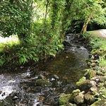 Photo of Glencar Waterfall