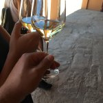 Photo de Castlexperience - Wine Tours
