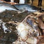Photo of Auckland Fish Market