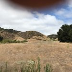 Photo de Aliso & Wood Canyons Wilderness Park