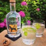 Dartmoor Distillery 'Black Dog Gin'
