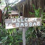 Photo of Baobab Beach Backpackers