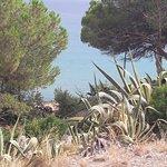 Foto de Playa Larga