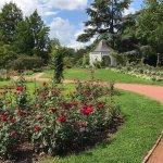 Europas Rosengarten Foto