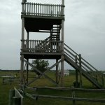Lookout tower gives bird's eye veiw of Ingalls land