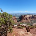 Deep canyons, weathered vegetation, and spectacular changes all within a 23 mile drive.