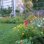 Garten bei Goethes Gartenhaus