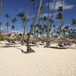 Photo de Paradisus Punta Cana Resort
