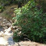 Limekiln Canyon Park