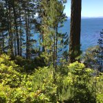 East Sooke Regional Park - Coast Trail.