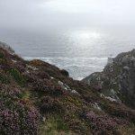 Foto de Sheep's Head Peninsula