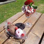 Puddings in the garden