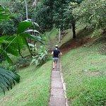 Rio Tico Safari Lodge Foto