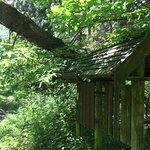 The trail Wysokie Bagno