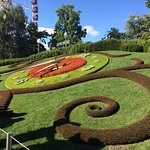 Photo of Flower Clock