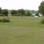 One part of Roundhill Campsite