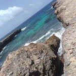 Bonaire National Marine Park Φωτογραφία