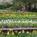 gardens in full spring bloomage