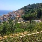 View from Patrizia's terrace