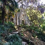 Photo of Monserrate Palace