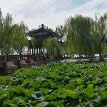 Foto de Palacio de verano (Yiheyguan)