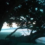 Photo of Raja Ampat Islands
