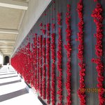 Honour Roll Wall