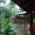 Photo of Selva Verde Lodge