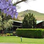 Waimea & Kohala cottages
