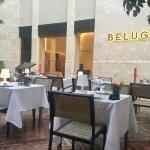Photo of Beluga Malaga