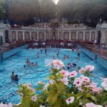 Photo de Gellert Spa