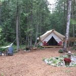 Cedar Haven luxury tents are a fantastic change from stuffy hotels. Comfy bed, stellar location