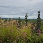 Denali Overlook Inn Photo