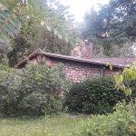 Oppenheimer's house #3