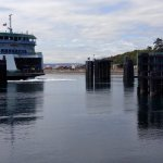 The car ferry coming in to dock