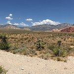 Red Rocks Canyon - Las Vegas - Panorama