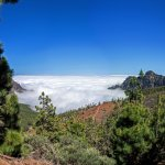 Photo of Forestal Park Tenerife