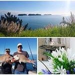 Anglers Lodge Fishing and surroundings