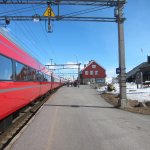 Photo de The Bergen Railway