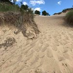 The main dune from the bottom, looking up.