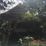 Photo of Topi Inn
