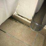L'état insalubre du mur des toilettes