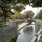 池町川の親水ゾーン越しに眺めた三本松公園