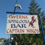 Photo of Captain Nikos Appaloosa
