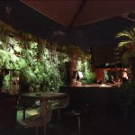 Outside bar with impressive planted wall